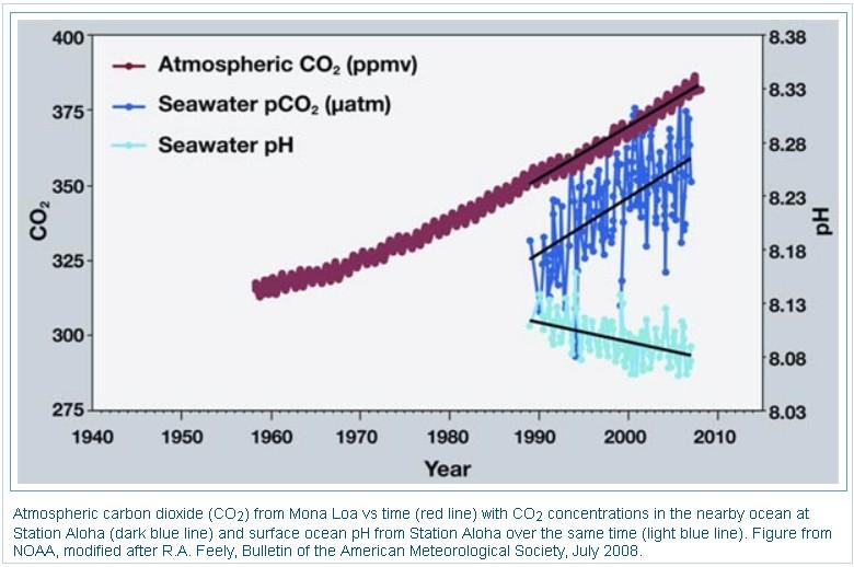 CO2-pH