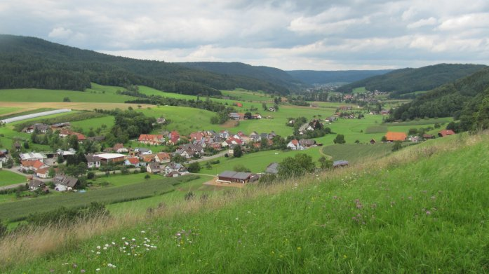 Blick über das Schuttertal - Natur- oder Kulturlandschaft?