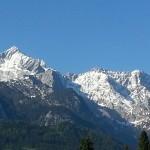 alpine-pointed-166297_640
