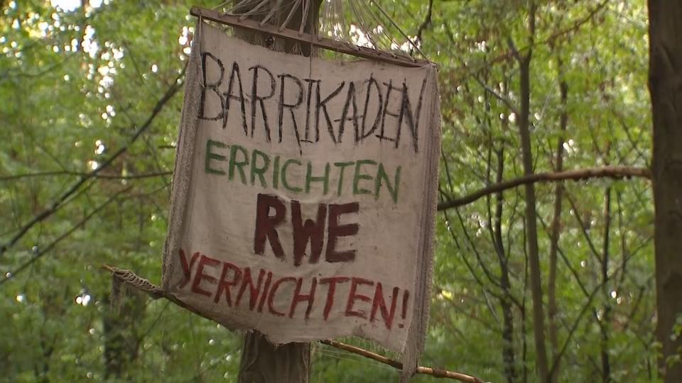 Hambacher Forst: Umweltschützer wappnen sich