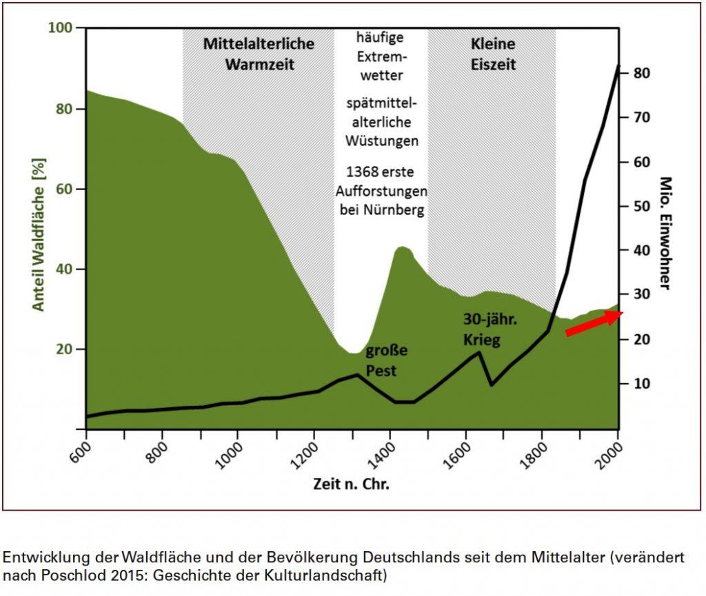 Waldfläche-Deutschland